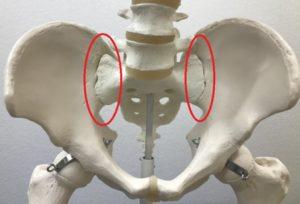 骨盤(仙腸関節)の治療 | 診療メニュー | いでの整形外科リウマチ科クリニック